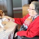 Residències i centres per a gent gran