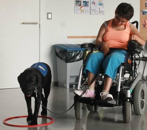 <p>La finalidad de la fundación Els Garrofers es la de dar respuesta a las necesidades existentes y/o futuras de las personas con discapacidad intelectual y/o física de la comarca del Maresme. Hay dos servicios diferentes, el de Llar-Residencia y el servicio residencial.</p>