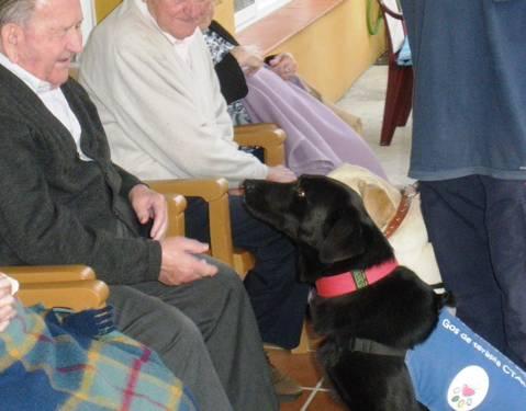 <p>El Vellet es un centro asistencial para gente mayor.</p>