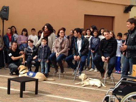 <p>El programa Divendres de Tv3 ens fa un reportatge per conèixer a Bescanó la història del Gerard Guerrero, el primer nen gironí amb autisme que conviu amb un gos d'assistència. Presentem alguns dels gossos de la fundació CRIT de Girona i expliquem com poden ajudar a les persones amb discapacitat.</p>