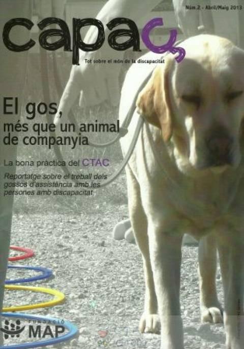 El gos més que un animal de companyia, per la Fundació MAP