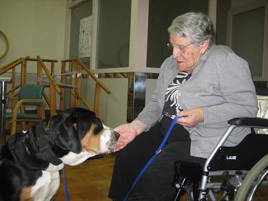 <p>La RGG Maria Gay és un centre residencial per a gent gran on existeixen diferents recursos assistencials. Els trastorns neurodegeneratius són les afectacions que majoritàriament presenten els usuaris, essent la demència per malaltia d'Alzheimer la més freqüent.</p>